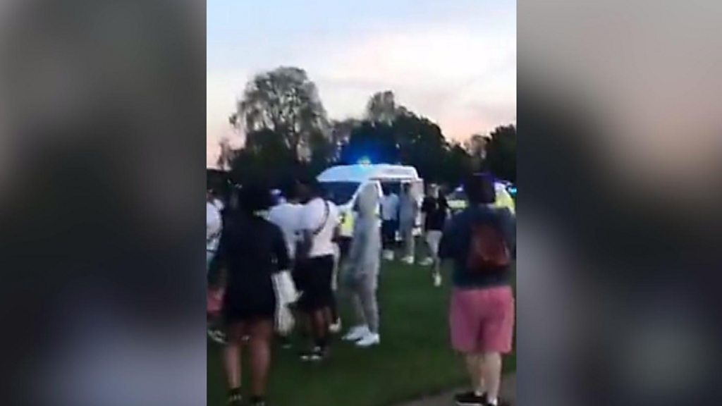 Hyde Park stabbing: Teenager stabbed in mass brawl