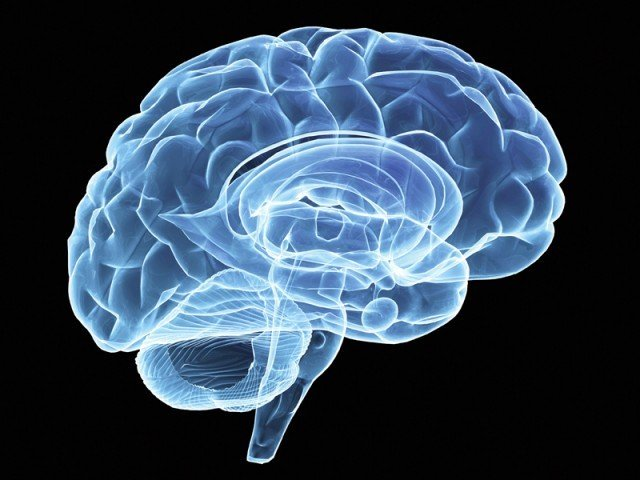 Advances in brain tech spur push for neuro rights