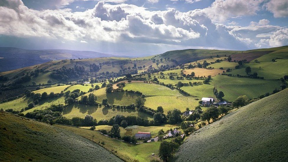 Covid: Holiday cottages to get 'year's takings over summer'
