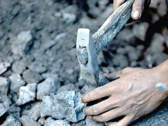 Synergy with Russia in energy and mineral resources